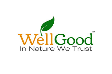 Invisible Inc. Web Design and Graphic - WellGood Superfoods Logo 1